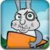 抓住捣蛋的兔子