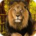 被困的狮王逃生