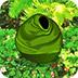 逃离茂密的热带森林小游戏
